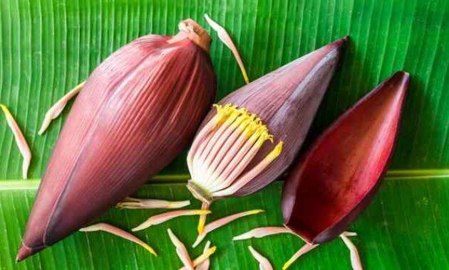 Manfaat jantung pisang Kandungan dan efek samping jantung pisang