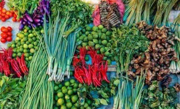 Pengertian Tanaman Hortikultura Adalah Arti, Jenis, Peran dan Cirinya