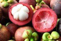 15 Manfaat Kulit Manggis Kandungan dan Efek Samping Untuk Kesehatan