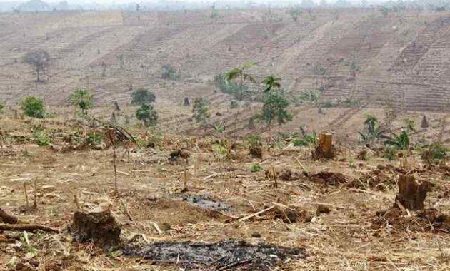 Tujuan Pengawetan Tanah