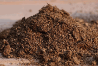 7 Faktor yang Mempengaruhi Ketersediaan Bahan Organik Tanah