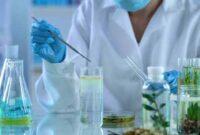 Sejarah Bioteknologi Hingga Zaman Modern